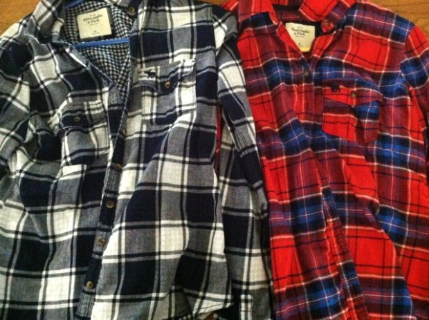 Same flannel..one red and one blue.