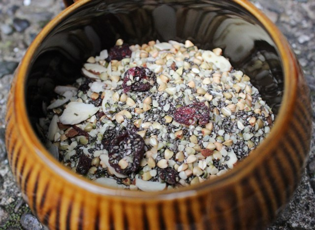 Breakfast- Oatmeal with berries and other fun seeds and rabbit like grains.