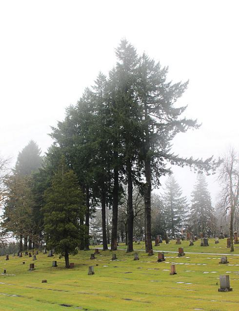 Portland Feb 2014 007a